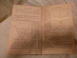 1921 Патон Культовая книга архитектура мосты, фото №5