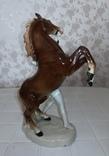 Конь и всадник. GH&CO. Германия, фото №8