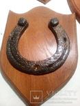 Подкова (підкова)  старинная -  найденая - 5 шт, фото №9