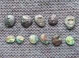 Комплекс монет Боспорского Царства Гермонасса Пантикапей, фото №3