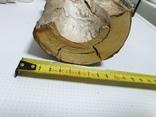 Бивень мамонта 1270грм, фото №2