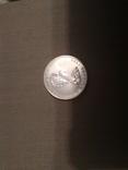 1989 - 5 долларов Канады,Кленовый лист,унция серебра в капсуле, фото №3