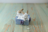 Статуэтка кролики NAO Lladro Daisa 1988, фото №3