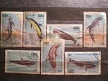 Куба 1984 Дельфины гаш серия