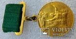 Малая Золотая медаль ВДНХ № 3324 на документе, фото №3