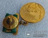Малая Золотая медаль ВДНХ № 3324 на документе, фото №11