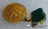 Малая Золотая медаль ВДНХ № 3324 на документе, фото №12