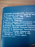 Бабочки Закавказья, набор 18 открю, изд. Планета 1988г, фото №5