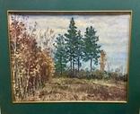 Поздняя осень - П.Горобец, фото №3