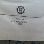 Кулинарные рецепты 1987р., фото №3