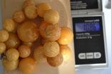 Янтарные бусы 108 грамм., фото №11