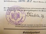Шитый спортивный знак RJA с документом. Спортивный знак молодежи Рейха (RJA), фото №10