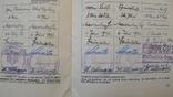 Шитый спортивный знак RJA с документом. Спортивный знак молодежи Рейха (RJA), фото №13