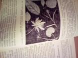 Краткий справочник фотолюбителя, Н.Панфилов, А. Фомин, изд. Искусство М 1982, фото №13