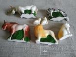 Зоопарк Осташевская фабрика игрушек Саванна СССР полный комплект этикетки коробка, фото №8