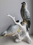 Хищные птицы на ветке, Карл Энс,Karl Ens, Германия, 1930-40 гг, фото №5
