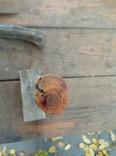 Нож ручная робота, фото №5