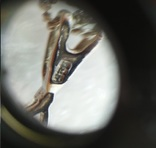 Цепочка с кулоном серебро 925, фото №8