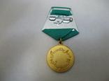 Медаль 10 лет Саурской Революции Афганистан, фото №3