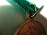 Медаль 10 лет Саурской Революции Афганистан, фото №6