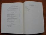 Булгаро-Татарская Монетная система XII-XV вв. (2), фото №11