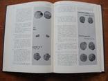Тысячелетие древнейших монет России. (16), фото №7