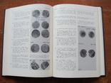 Тысячелетие древнейших монет России. (16), фото №11