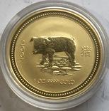 100 $ 2007 года Австралия лунар «Год Свиньи» золото 31,1 грамм 999,9', фото №2