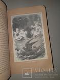 1866 Жизнь птиц с 27 цветными иллюстрациями, фото №6