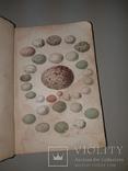 1866 Жизнь птиц с 27 цветными иллюстрациями, фото №11