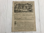 1884 Еврейская хроника, без цензуры Лучь, фото №3