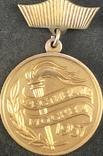 Золотой знак Лауреата I-й премии конкурса всесоюзного фестиваля советской молодежи 1957г, фото №2