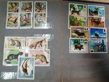 Альбом с марками Животный мир (птицы, рыбы и пр.), фото №11