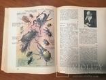 Детская энциклопедия в двух томах, фото №4