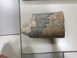 Фрагмент бивня мамонта 1755, фото №2