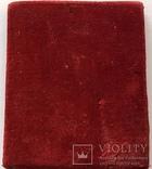 Святая Анастасия, 84, 65 на 55мм, фото №10
