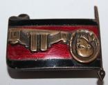 Траурный знак с изображением неосуществленного проекта мавзолея. 1924г., фото №6