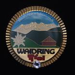 Альпийский,австрийский знак коммуны Вайдринг,Тироль, фото №2