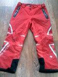 Golotest (Швейцария) - фирменные штаны, фото №2