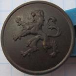 Гудзик бельгійський, фото №2