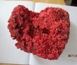 Натуральный красный коралл  (Tubipora musica) 192 гр, фото №8