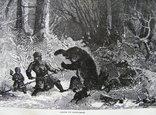 Гравюра. Охота с рогатиной. Конец 19 века