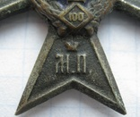 Полковик 137 Нежинский полк Белый металл, фото №7
