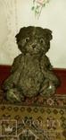 Медведь ревун 50-60 года, фото №2