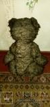 Медведь ревун 50-60 года, фото №4