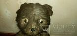 Медведь ревун 50-60 года, фото №5