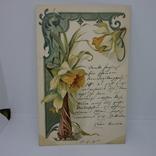 Открытка Цветы Нарциссы, фото №2