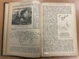 Книга природы и человеческой культуры 1913 года 25х18 см, фото №10