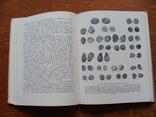 Русская монетная система. И. Г. Спасский. (101), фото №6