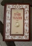 Книга каталог «Гроші України» / «Деньги Украины» лимитированное коллекционное издание НБУ, фото №2